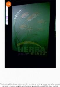 Sticla sablata cu model color pentru usa lemn