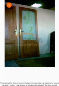 Sticla sablata float 4 mm cu model color pentru usa interior